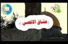 يوم المحاسب الفلسطيني36